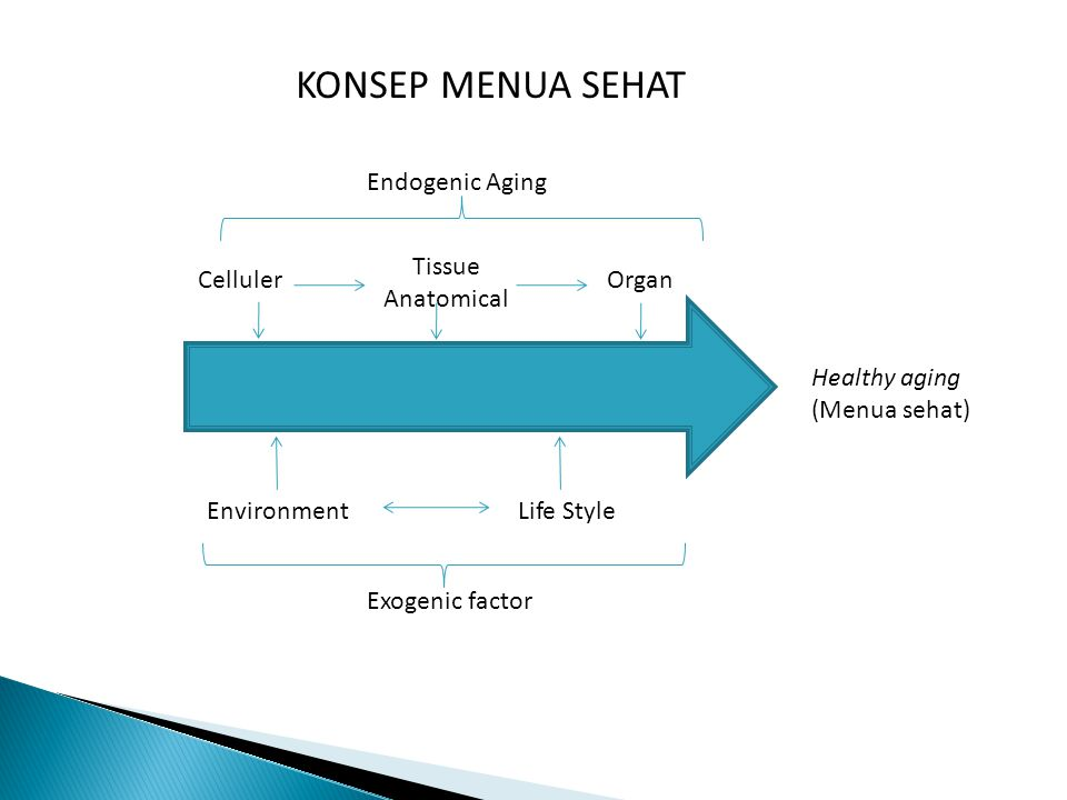KONSEP MENUA SEHAT Endogenic Aging Tissue Anatomical Celluler Organ