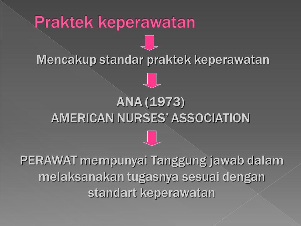Praktek keperawatan Mencakup standar praktek keperawatan