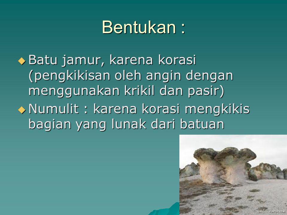 Bentukan : Batu jamur, karena korasi (pengkikisan oleh angin dengan menggunakan krikil dan pasir)