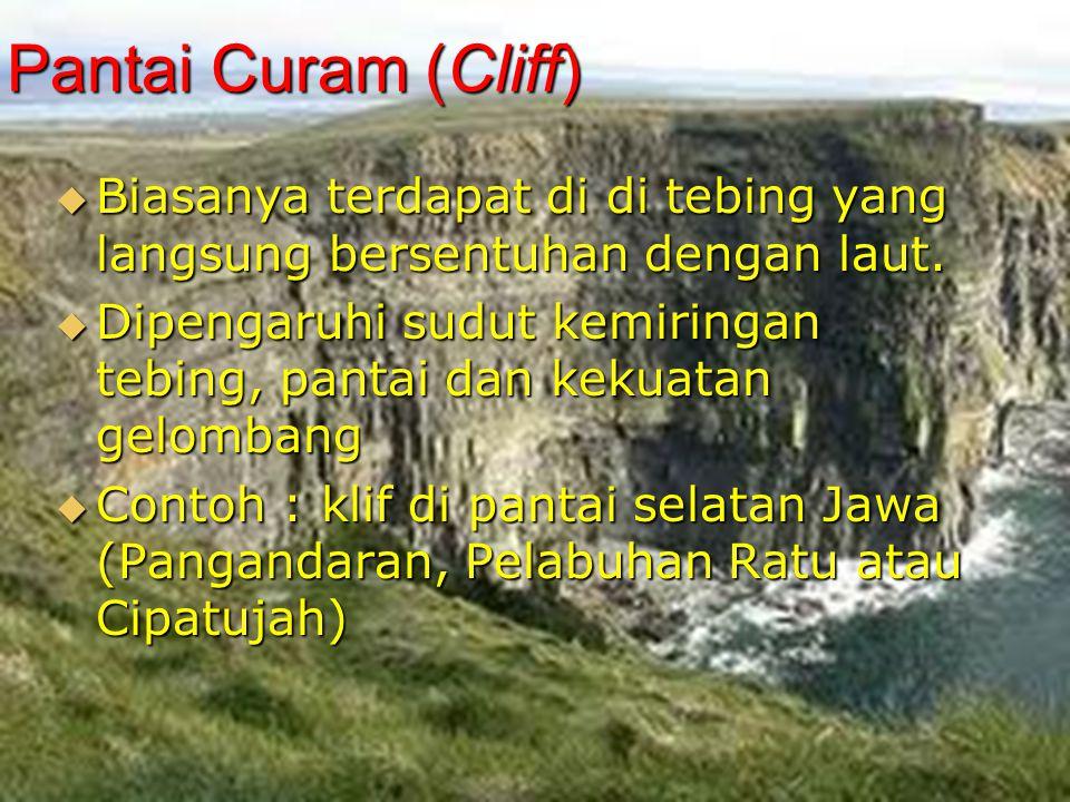 Pantai Curam (Cliff) Biasanya terdapat di di tebing yang langsung bersentuhan dengan laut.