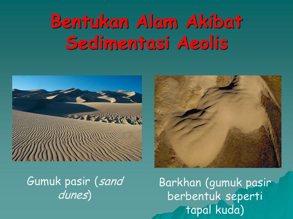 Bentukan Alam Akibat Sedimentasi Aeolis