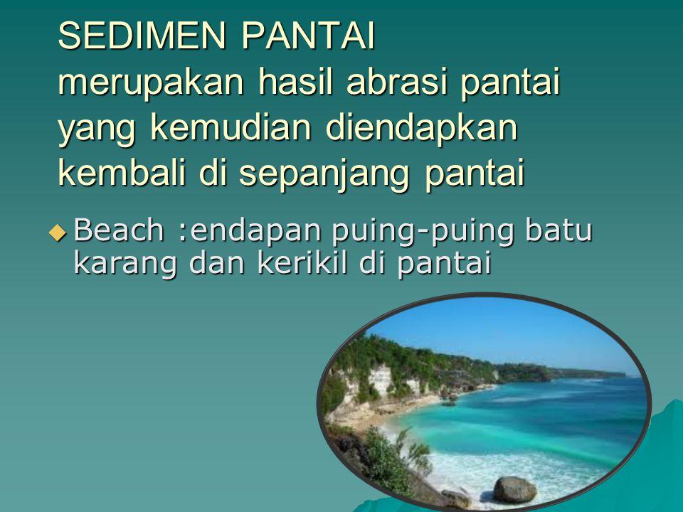 SEDIMEN PANTAI merupakan hasil abrasi pantai yang kemudian diendapkan kembali di sepanjang pantai