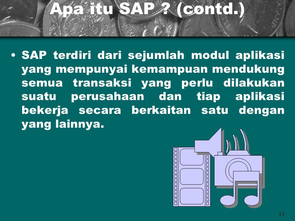 Apa itu SAP (contd.)