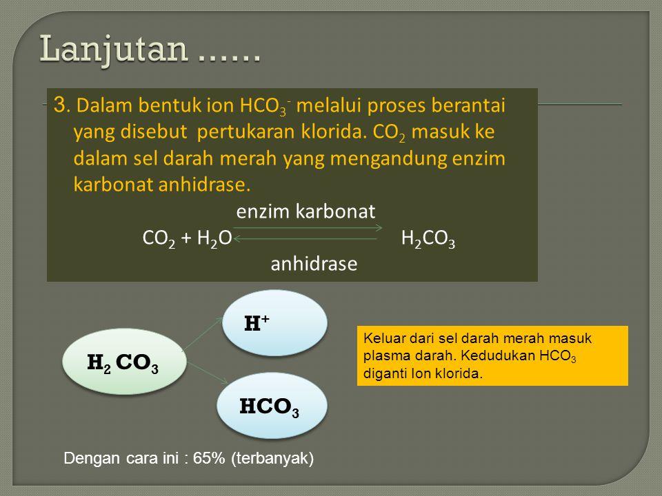 Lanjutan ...... 3. Dalam bentuk ion HCO3- melalui proses berantai
