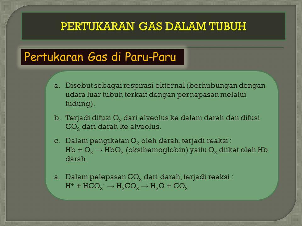 PERTUKARAN GAS DALAM TUBUH