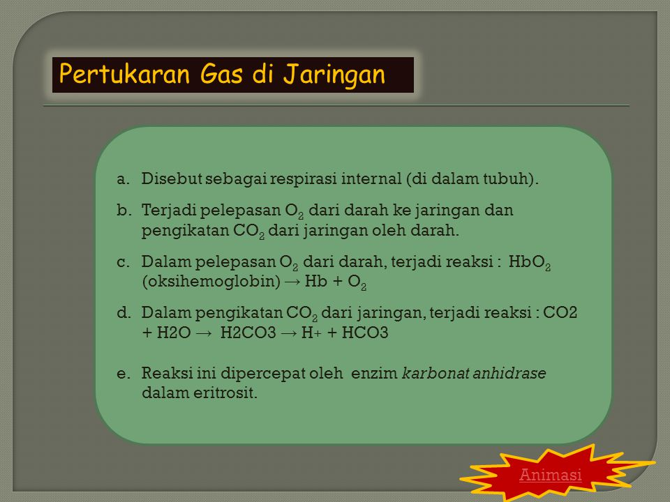 Pertukaran Gas di Jaringan