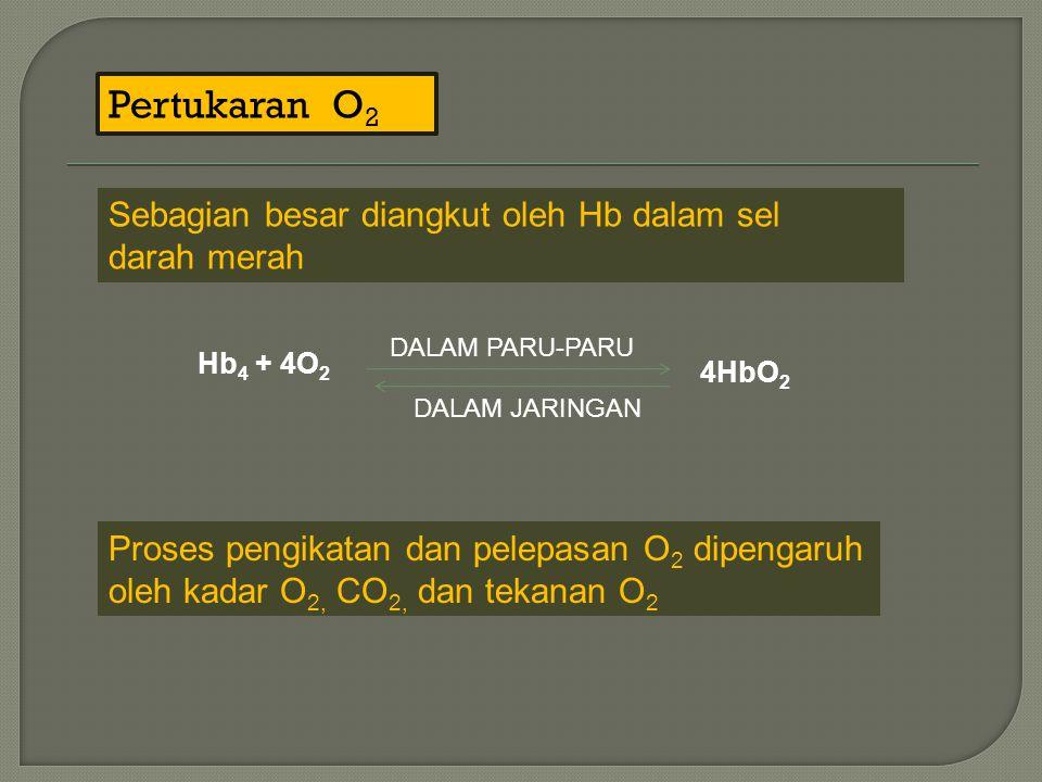 Pertukaran O2 Sebagian besar diangkut oleh Hb dalam sel darah merah