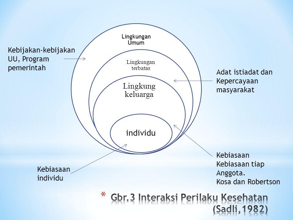 Gbr.3 Interaksi Perilaku Kesehatan (Sadli,1982)