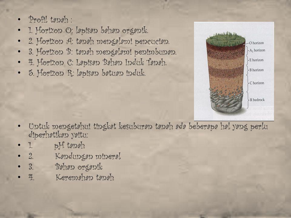 Profil tanah : 1. Horizon O: lapisan bahan organik. 2. Horizon A: tanah mengalami pencucian. 3. Horizon B: tanah mengalami penimbunan.