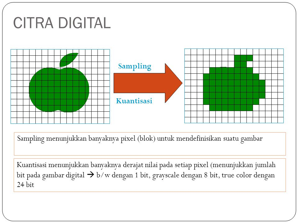 CITRA DIGITAL Sampling Kuantisasi