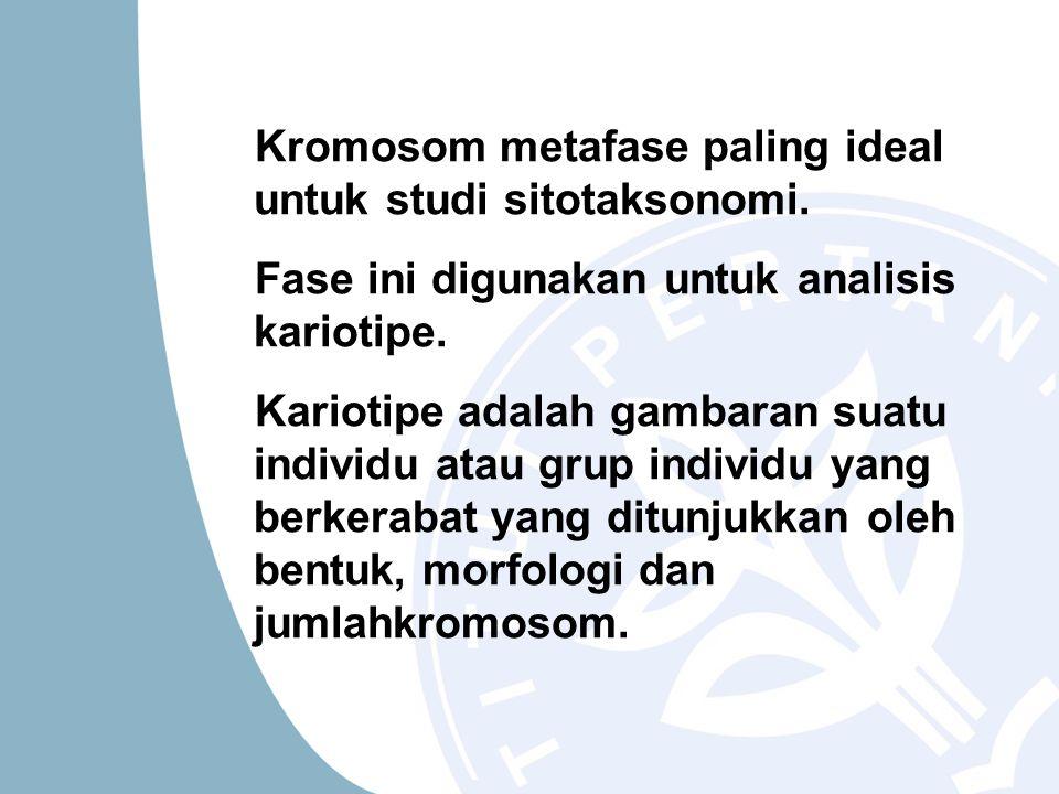 Kromosom metafase paling ideal untuk studi sitotaksonomi.