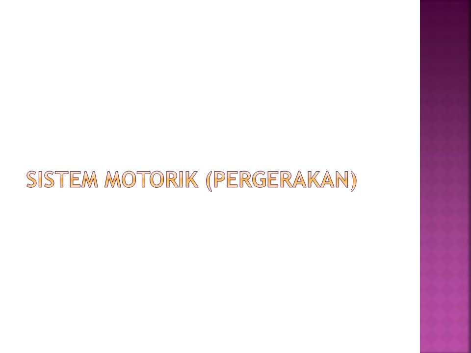 Sistem motorik (pergerakan)