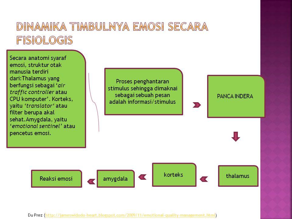 Dinamika Timbulnya Emosi secara Fisiologis