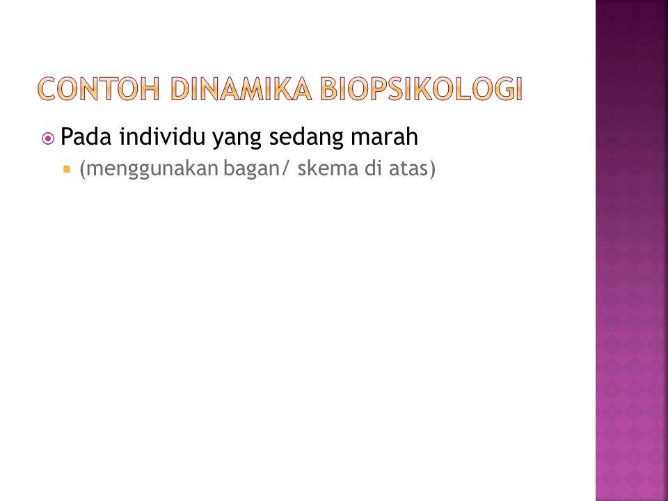 Contoh dinamika biopsikologi