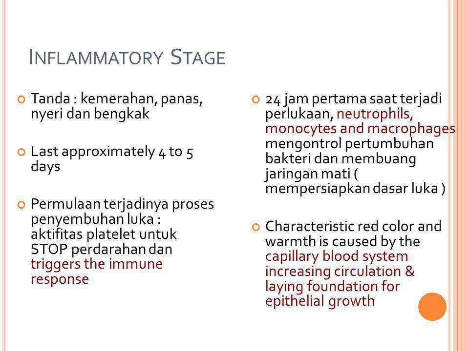 Inflammatory Stage Tanda : kemerahan, panas, nyeri dan bengkak