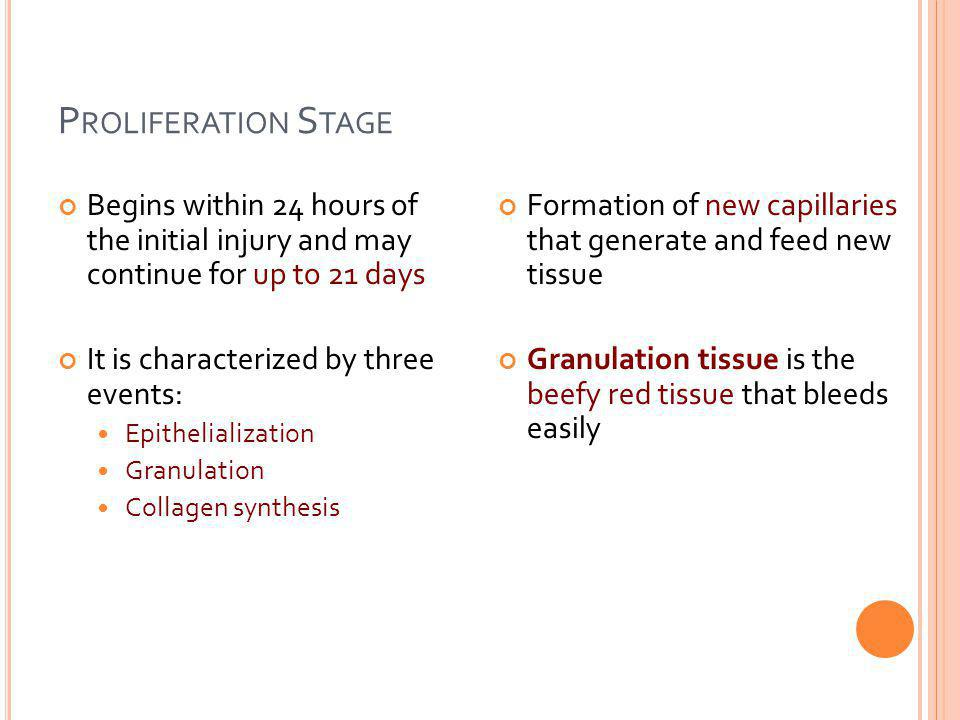 Proliferation Stage Begins within 24 hours of the initial injury and may continue for up to 21 days.