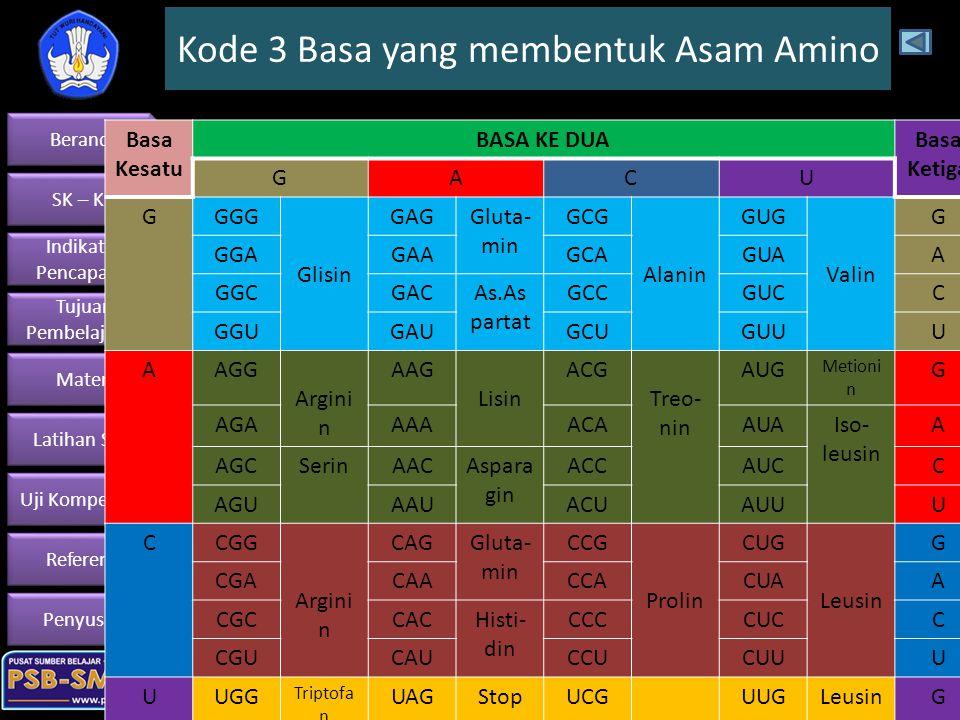 Kode 3 Basa yang membentuk Asam Amino