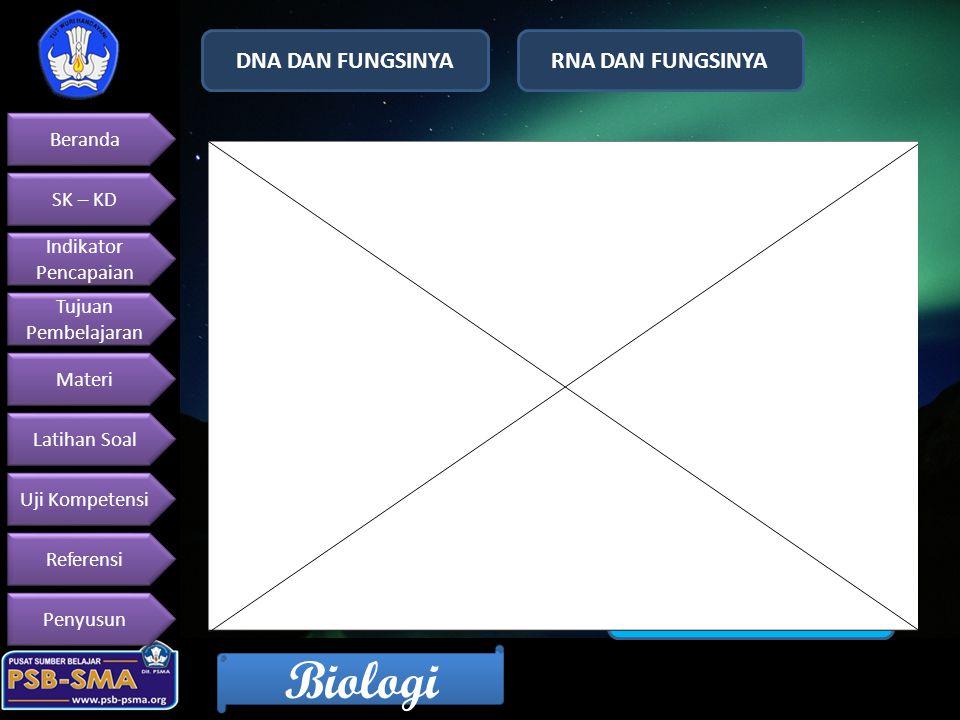 DNA DAN FUNGSINYA RNA DAN FUNGSINYA SINTESA PROTEIN KODE GENETIKA