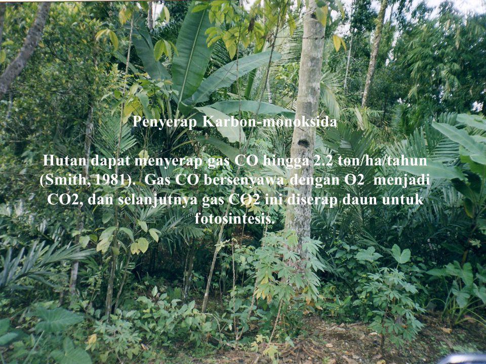 Penyerap Karbon-monoksida