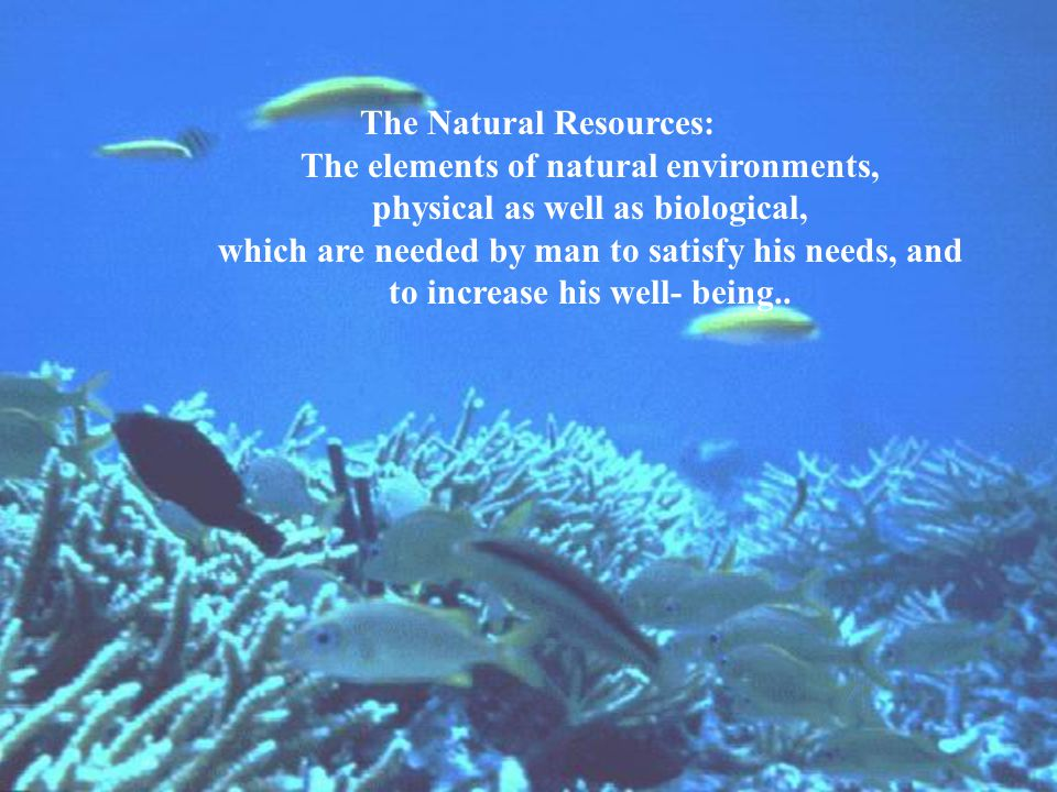 The Natural Resources: The elements of natural environments,