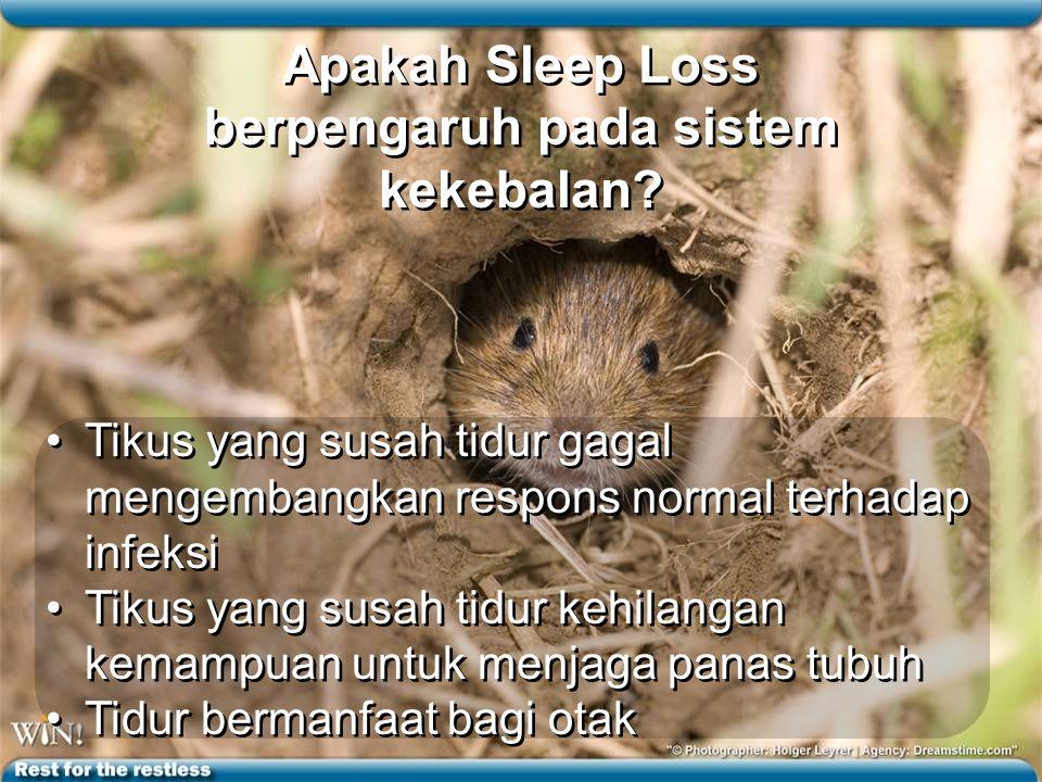 Apakah Sleep Loss berpengaruh pada sistem kekebalan
