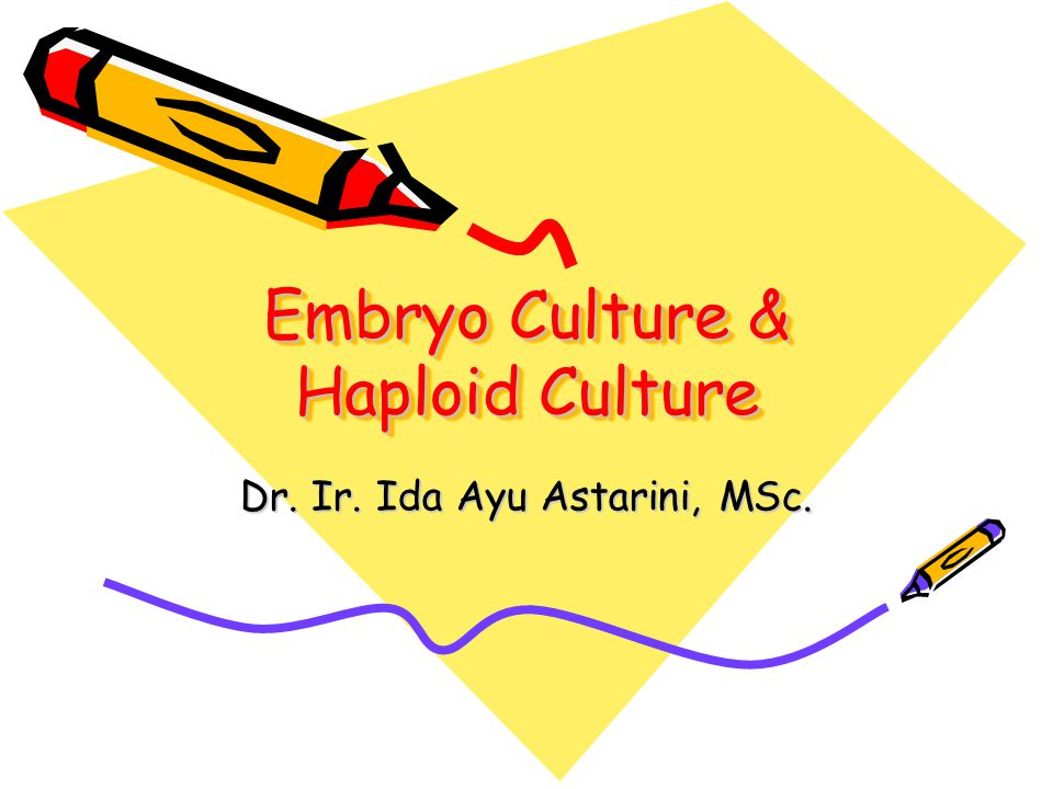 Embryo Culture & Haploid Culture