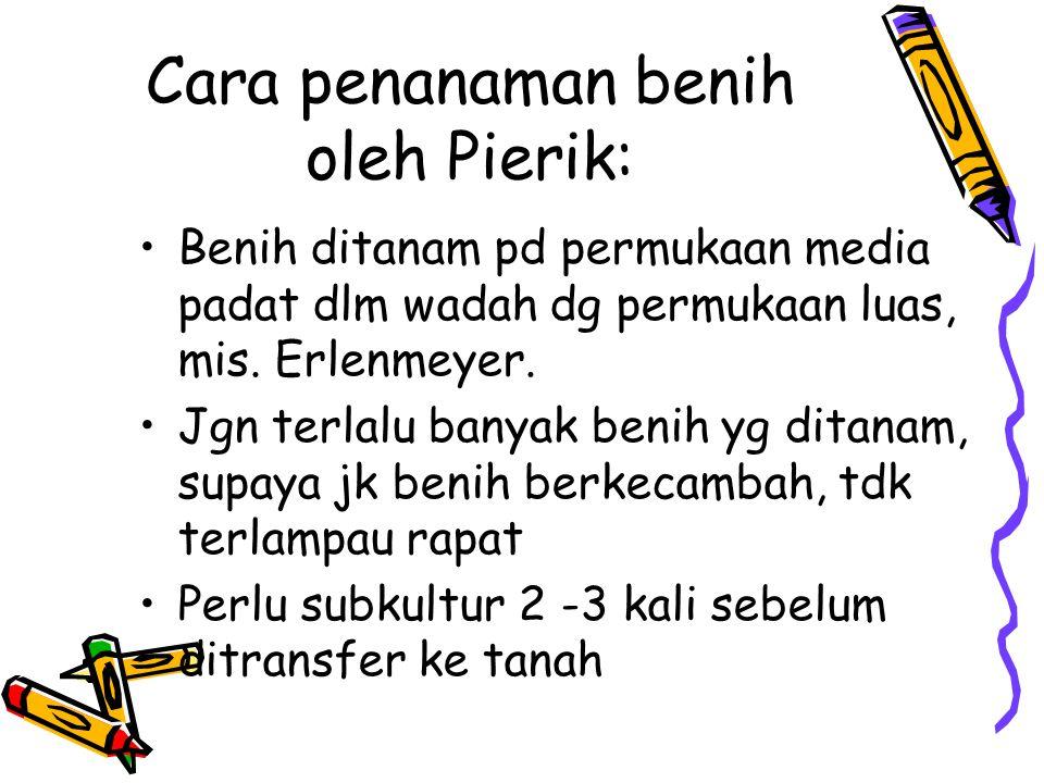 Cara penanaman benih oleh Pierik: