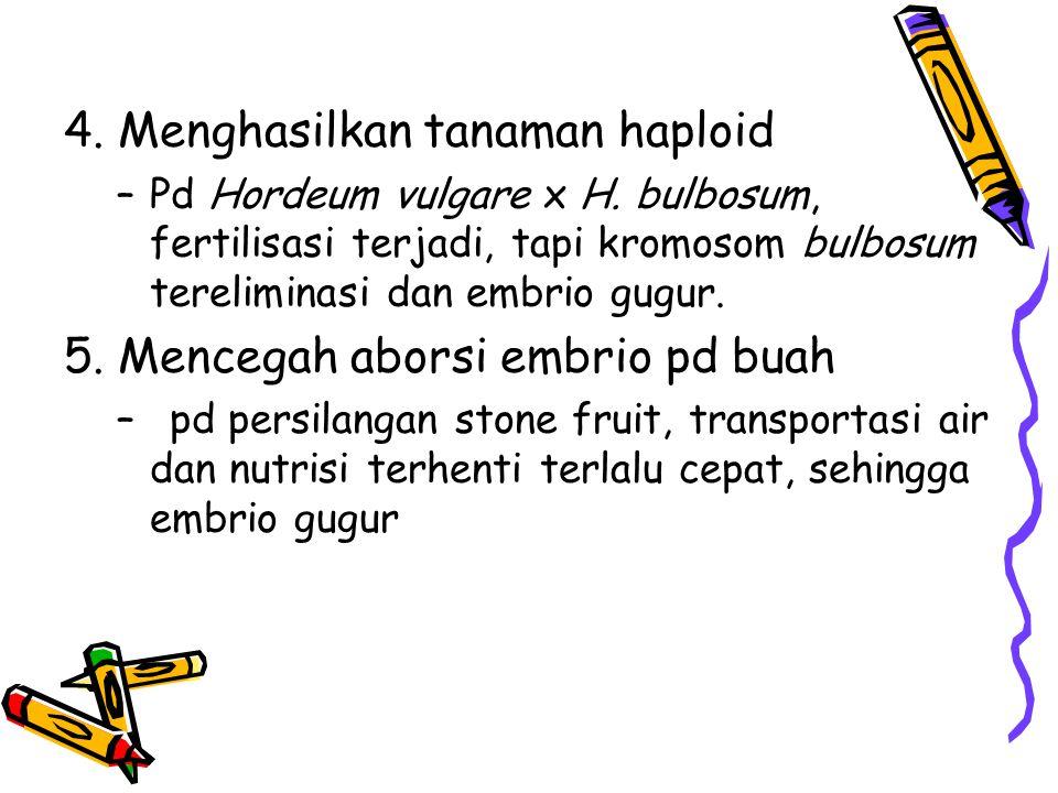 4. Menghasilkan tanaman haploid