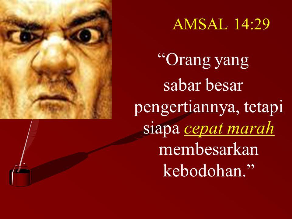 AMSAL 14:29 Orang yang sabar besar pengertiannya, tetapi siapa cepat marah membesarkan kebodohan.