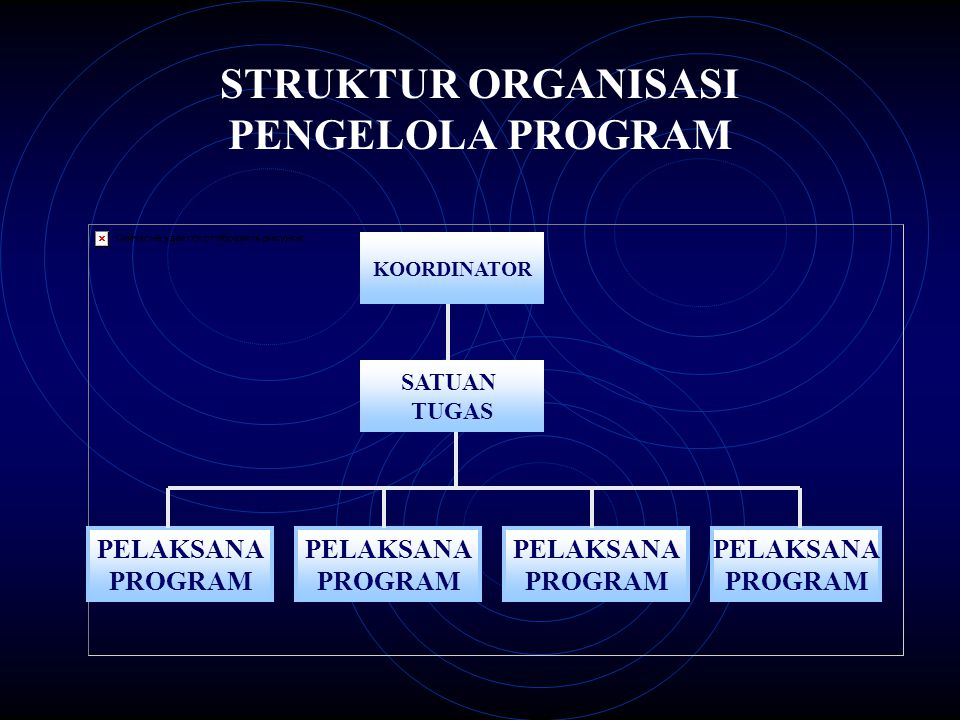 STRUKTUR ORGANISASI PENGELOLA PROGRAM