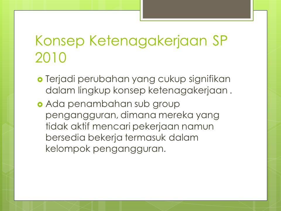 Konsep Ketenagakerjaan SP 2010
