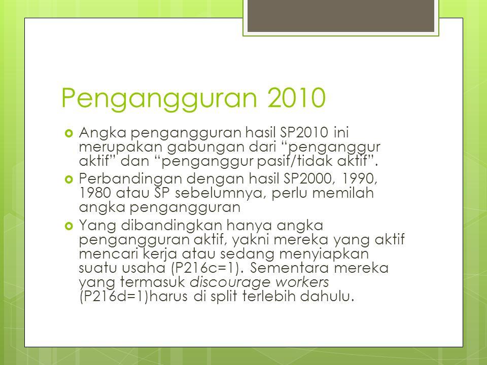 Pengangguran 2010 Angka pengangguran hasil SP2010 ini merupakan gabungan dari penganggur aktif dan penganggur pasif/tidak aktif .