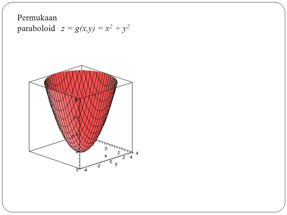 Permukaan paraboloid z = g(x,y) = x2 + y2
