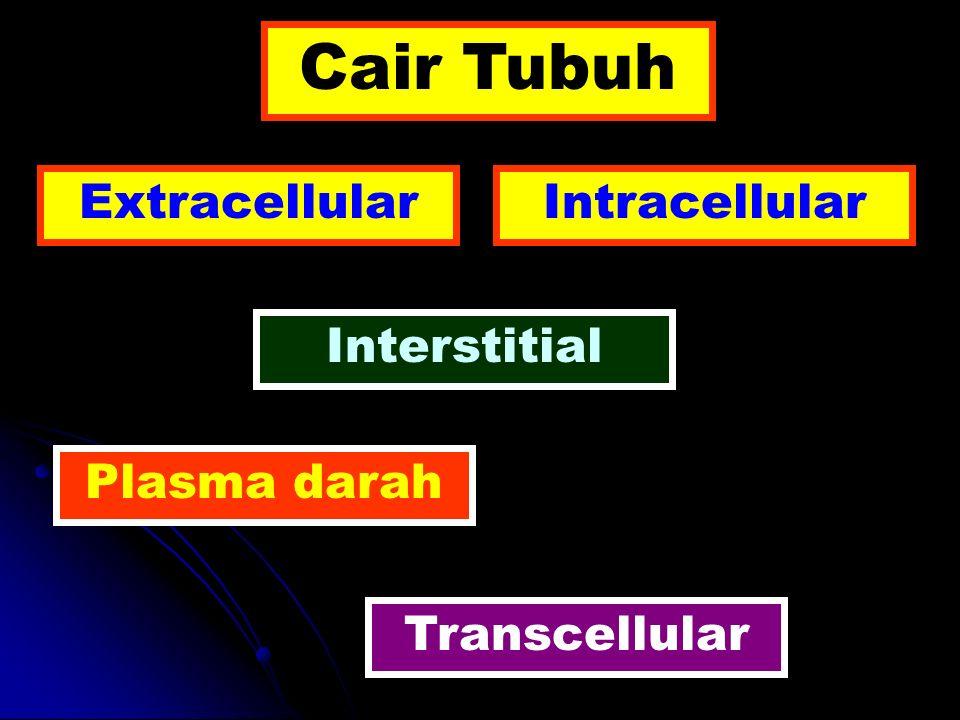 Cair Tubuh Extracellular Intracellular Interstitial Plasma darah