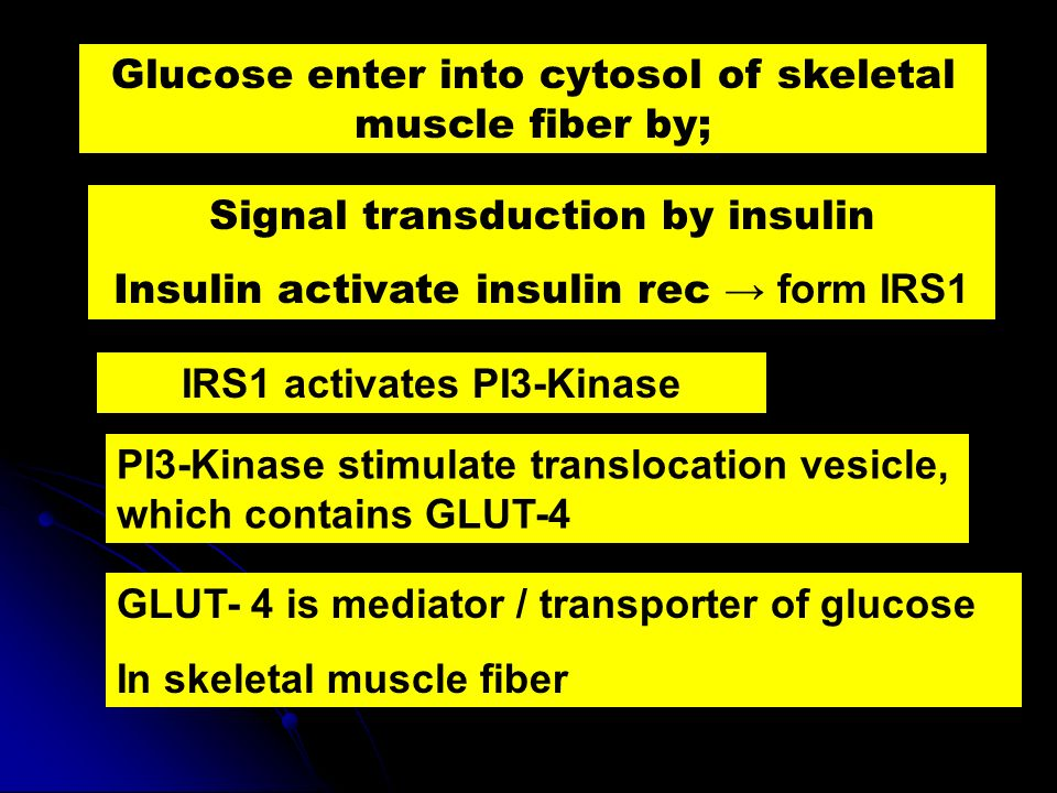 Glucose enter into cytosol of skeletal muscle fiber by;