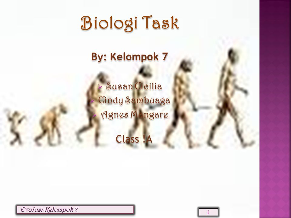EVOLUSI Biologi Task By: Kelompok 7 Susan Cicilia Cindy Sambuaga