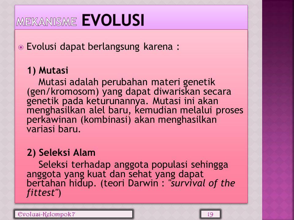 Mekanisme Evolusi Evolusi dapat berlangsung karena : 1) Mutasi