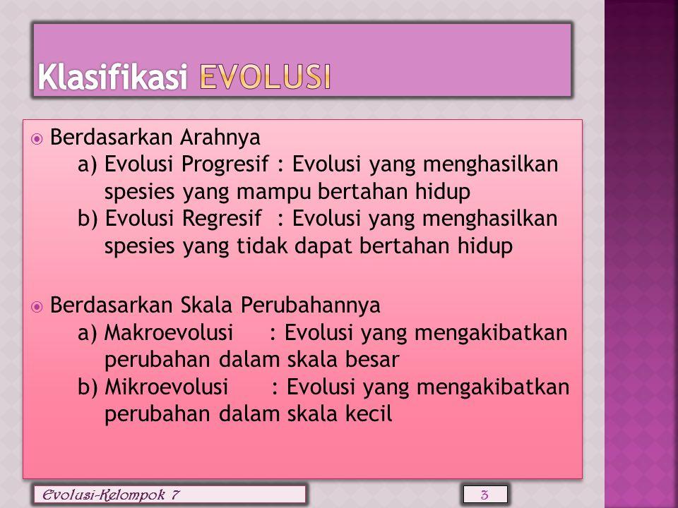 Klasifikasi evolusi