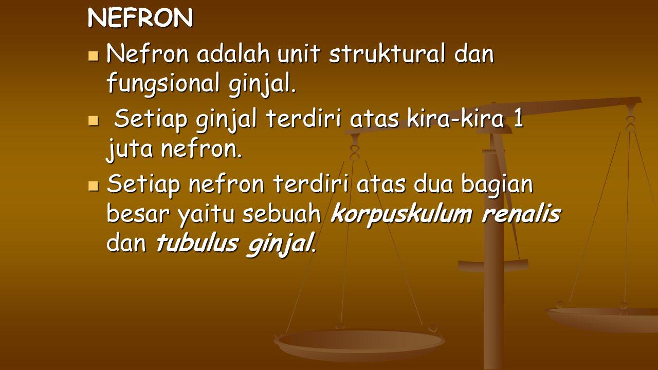 NEFRON Nefron adalah unit struktural dan fungsional ginjal. Setiap ginjal terdiri atas kira-kira 1 juta nefron.