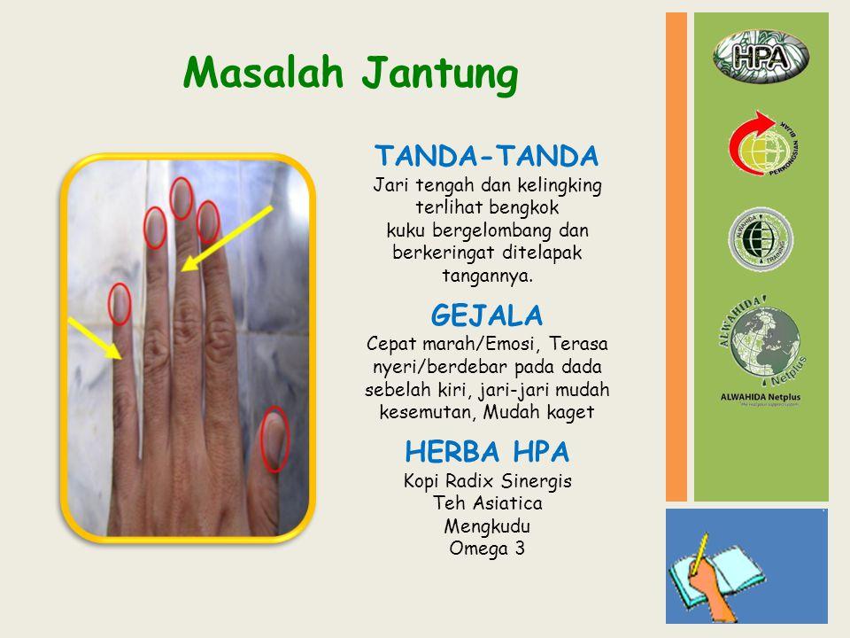 HERBA HPA Kopi Radix Sinergis Teh Asiatica Mengkudu Omega 3