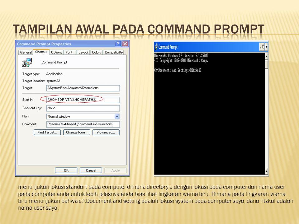 Tampilan Awal pada Command prompt
