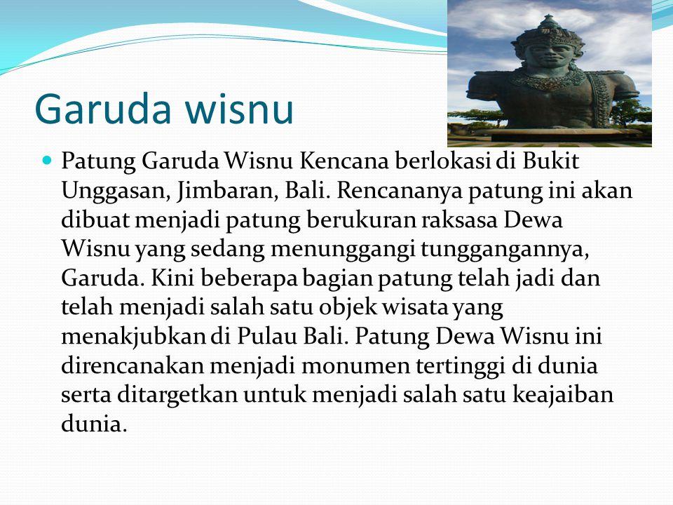 Garuda wisnu