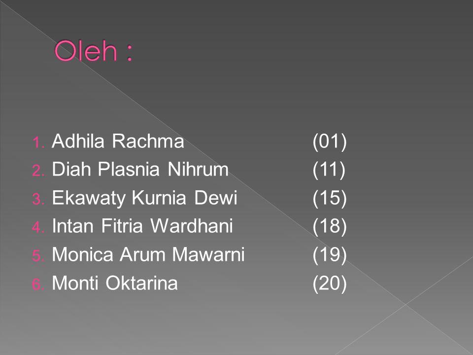Oleh : Adhila Rachma (01) Diah Plasnia Nihrum (11)