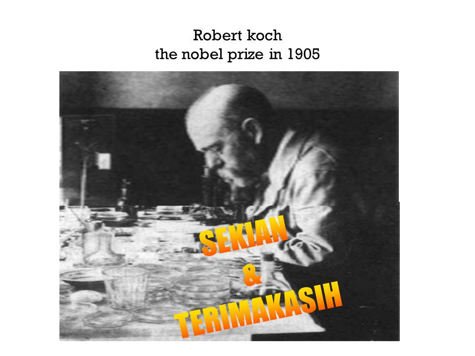 Robert koch the nobel prize in 1905