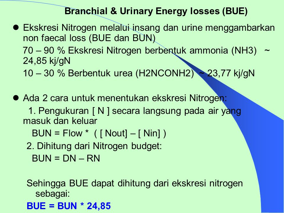Branchial & Urinary Energy losses (BUE)
