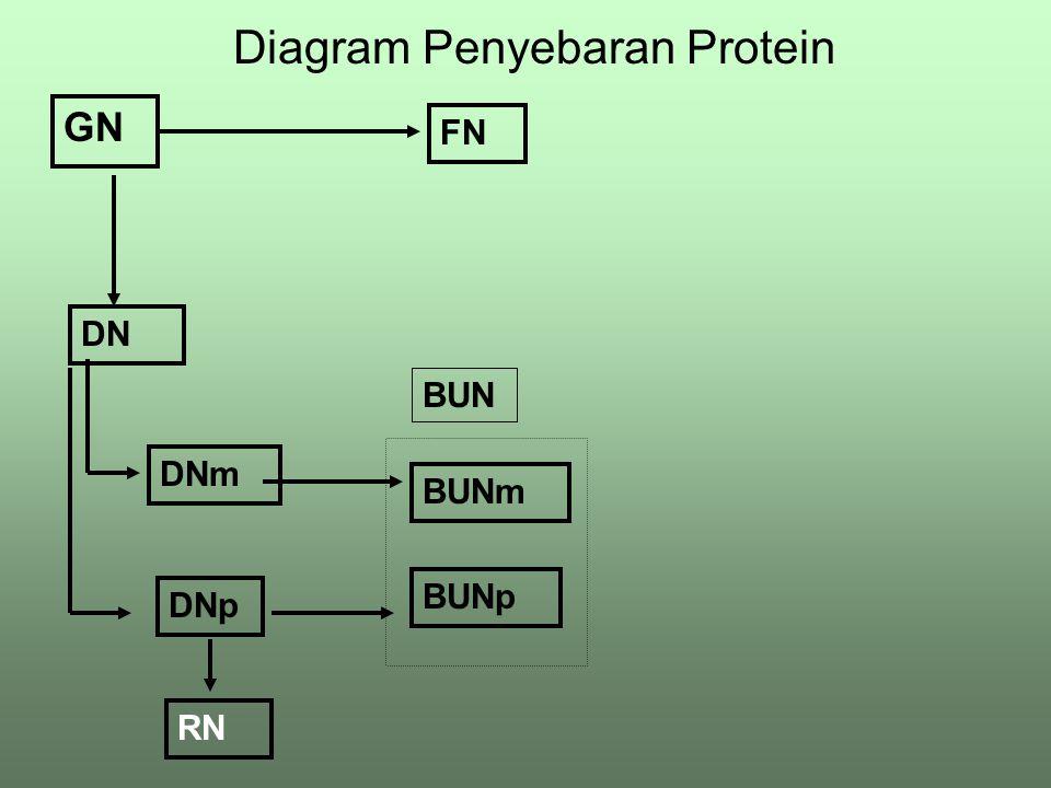 Diagram Penyebaran Protein