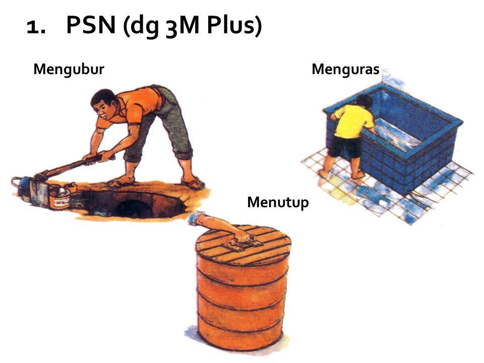 PSN (dg 3M Plus) Mengubur Menguras Menutup
