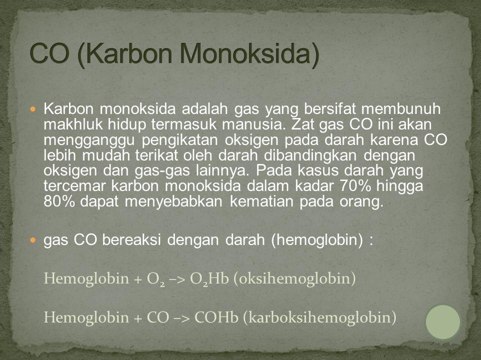 CO (Karbon Monoksida)