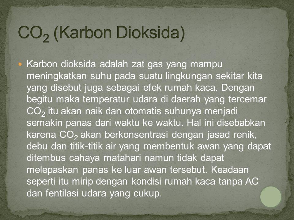 CO2 (Karbon Dioksida)