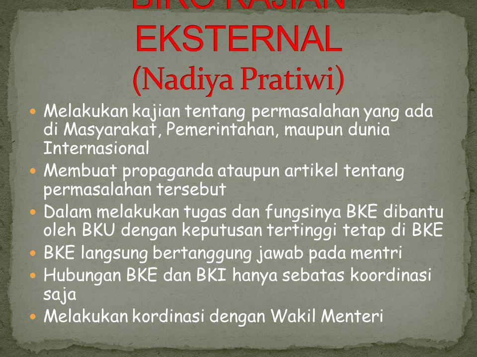 BIRO KAJIAN EKSTERNAL (Nadiya Pratiwi)